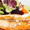 Free Grilled Salmon And Vegetables With Sauce Stock Images - 8465464