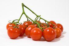 Free Cherry Tomatoes Stock Photo - 8460030