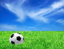 Free Football Ball On The Field Stock Photos - 8460223