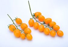 Free Yellow Tomatoes Royalty Free Stock Photography - 8460657