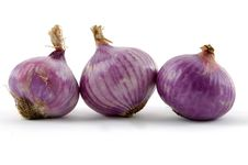 Free Onion Stock Images - 8461514
