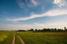 Free Clouds And Grass Royalty Free Stock Photos - 8462628