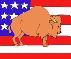 Free Simbol Of USA Royalty Free Stock Photo - 8464695