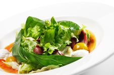 Duck Breast Salad With Red Chaud-Froid Sauce Stock Photos