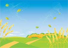 Free Autumn Landscape Stock Images - 8467784