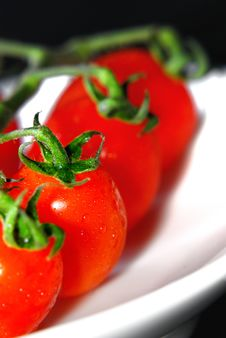 Free Red Tomato Stock Images - 8468124