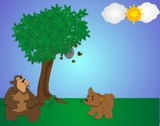Free Bears In A Park Royalty Free Stock Images - 8469389