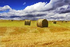 Free Haystacks On Yellow Field Royalty Free Stock Photos - 8470238