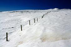 Free Snow Field Royalty Free Stock Photo - 8471275