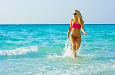 Free Walking Out Of The Sea Royalty Free Stock Photography - 8471287