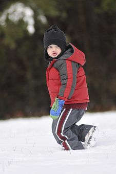 Free Boy Playing In Snow Royalty Free Stock Images - 8472709