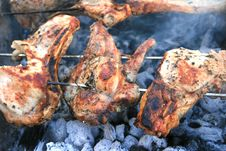 Free Barbecue Stock Photography - 8472752