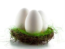 Free Three Goose Eggs In The Nest Royalty Free Stock Photography - 8473187