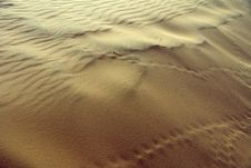 Free Sand Dunes Royalty Free Stock Photos - 8473438