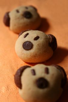Free Bear Cookies Stock Images - 8476494