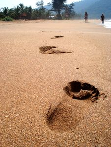 Free Footprints Royalty Free Stock Images - 8476659