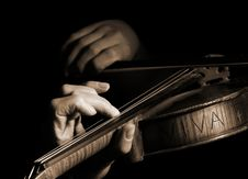 Free Musician Playing Violin Royalty Free Stock Images - 8477519