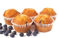 Free Blueberry Muffins On White Stock Images - 8478154