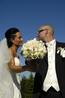 Free Wedding Bouquet And Wedding Couple Stock Photography - 8478242