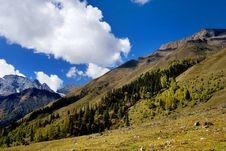 Free Day View Of Highland At Sichuan Province China Royalty Free Stock Photos - 8479688