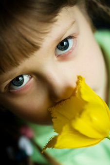 Free Girl With Flower Stock Photos - 8479783