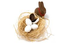 Free Bunny With Hatched Egg Royalty Free Stock Photography - 8479917