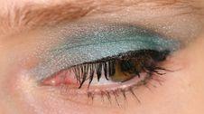 Free Blue Eye Stock Images - 8480734