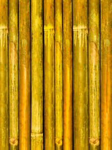 Free Tree Trunks A Bamboo Stock Image - 8481141