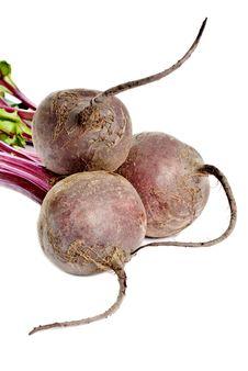 Free Beet Root Stock Image - 8484101