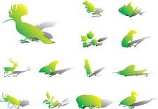 Free Set Icons - 98A. Nature Stock Photography - 8486682