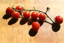 Free Cherry Tomatoes Stock Photos - 8486993