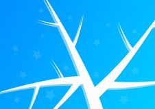 Free Blue Winter Sky Stock Images - 8488454