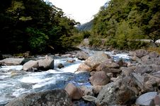 Free The Hollyford River. Fiordland NZ Royalty Free Stock Photo - 84896575