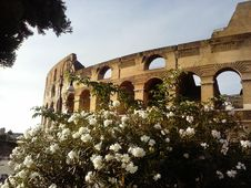 Free Colosseo Royalty Free Stock Image - 84896996