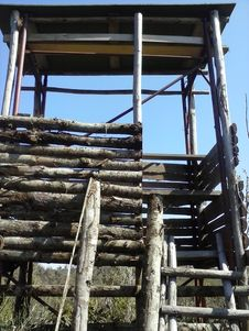 Free Sky, Wood, Lumber, Landscape Stock Image - 84899901