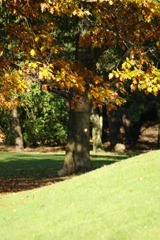 Free Autumn In A French Park Stock Images - 8490244