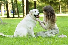 Free Girl With The Golden Retriever In The Park Stock Images - 8492074