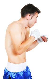 Free Boxer Stock Photo - 8492350
