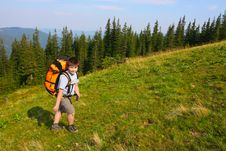 Free Hiking Royalty Free Stock Photography - 8492837