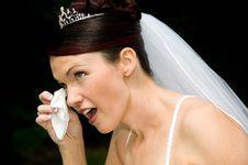 Free White Bride Stock Image - 8493241