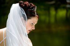 Free White Bride Royalty Free Stock Photos - 8493248