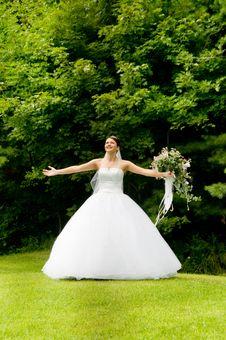 Free White Bride Stock Image - 8493381