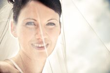Free White Bride Royalty Free Stock Images - 8493459