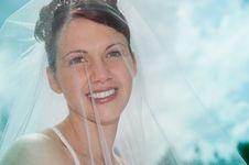 Free White Bride Stock Photography - 8493482