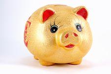Money-box Stock Image