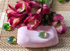 Free Spa. Soap And Flowers Stock Photography - 8493742