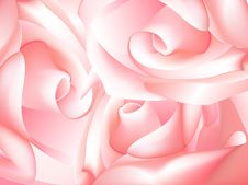 Free Pink Rose Royalty Free Stock Photography - 8494387