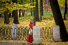 Free Lady In Autumn Forest Royalty Free Stock Photo - 8497595