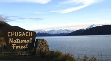 Free Chugach National Forest Sign, Alaska Royalty Free Stock Photography - 8498137