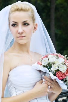 Free Bride Royalty Free Stock Photography - 8498537